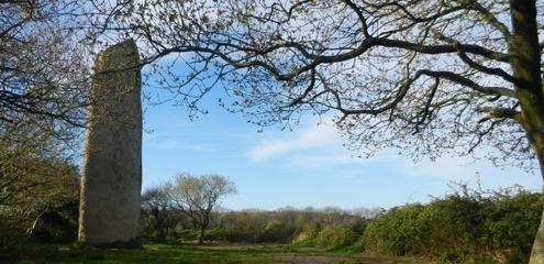 menhir-arbre