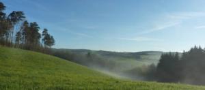 brume au matin