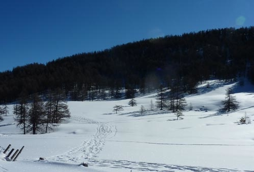 paysage enneigé