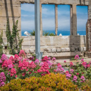 alcatraz prison fleurie