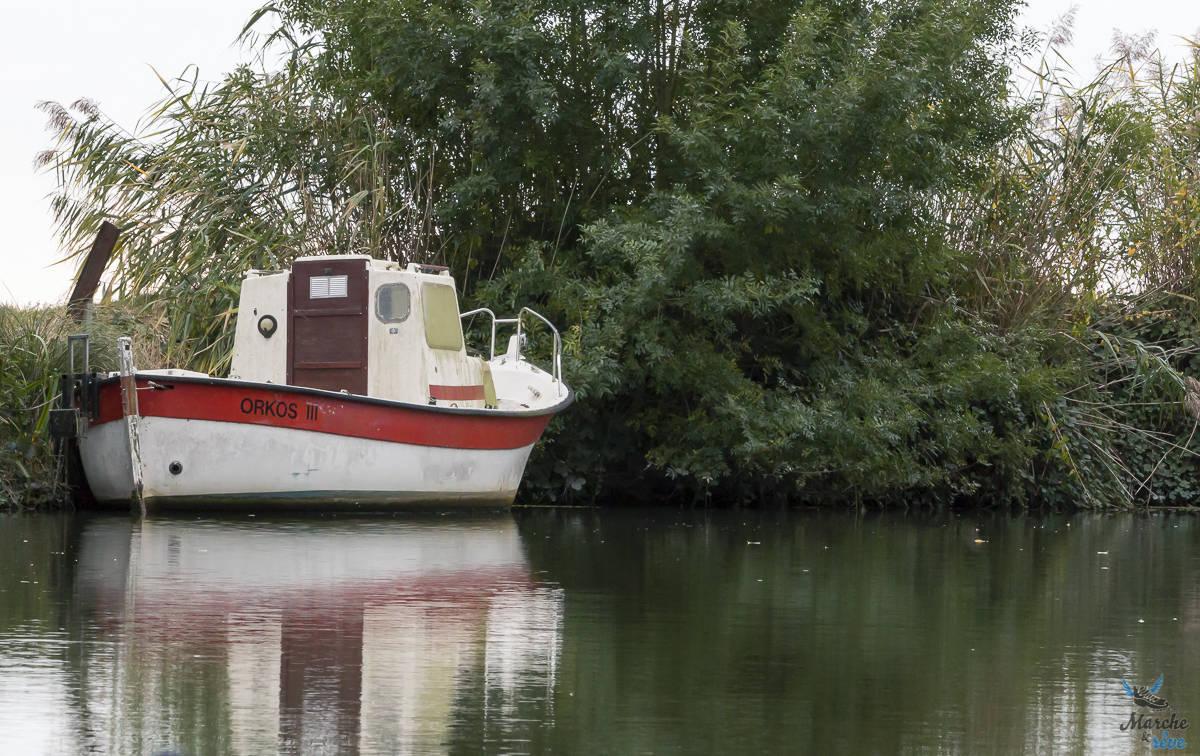 balade en bateau dans le marais poitevin