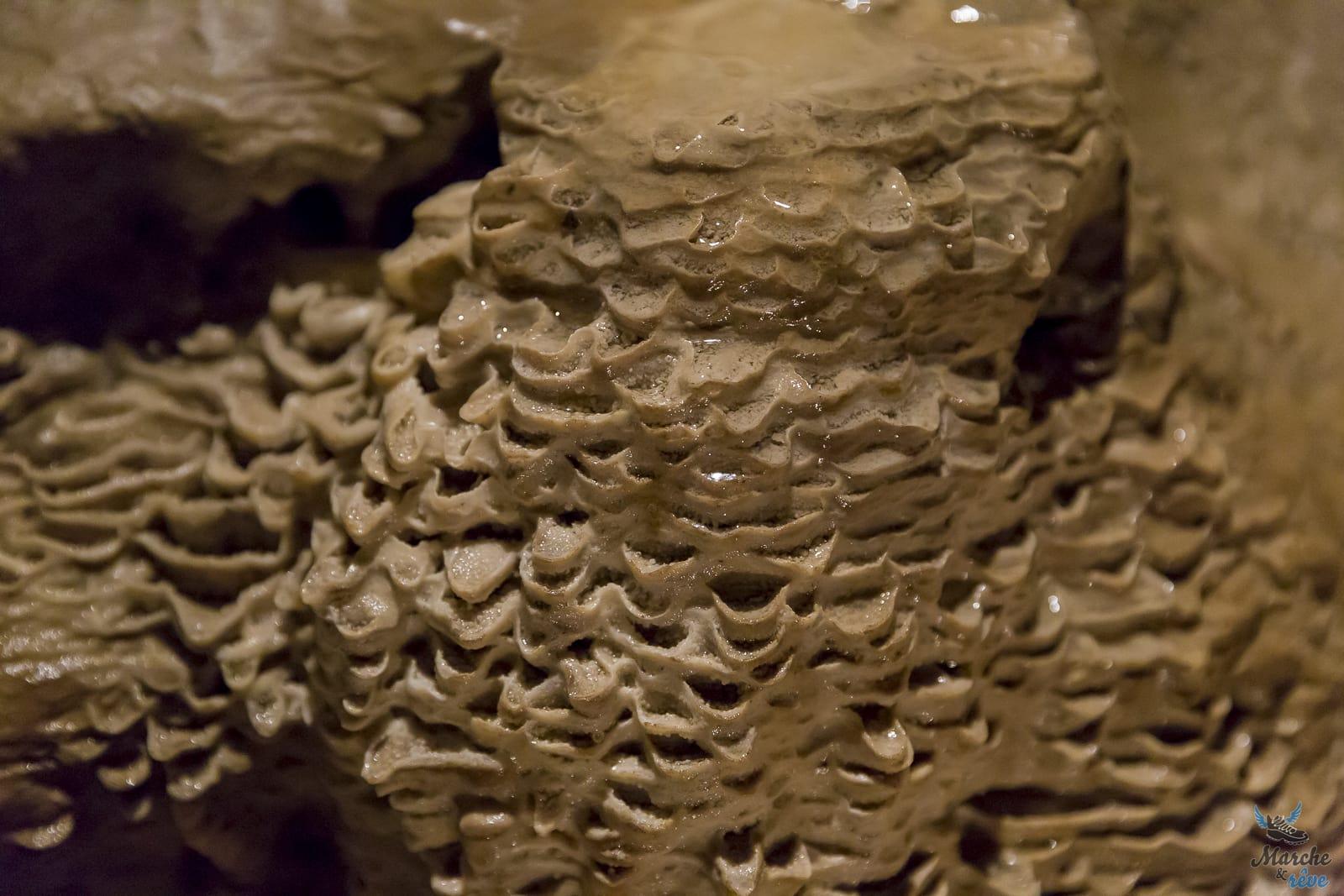Visite de la grotte Margot