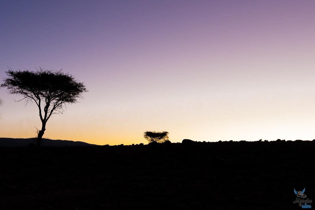 trek désert matin