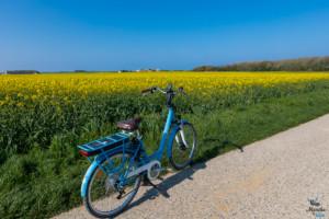 Balade à vélo en côte d'Opale